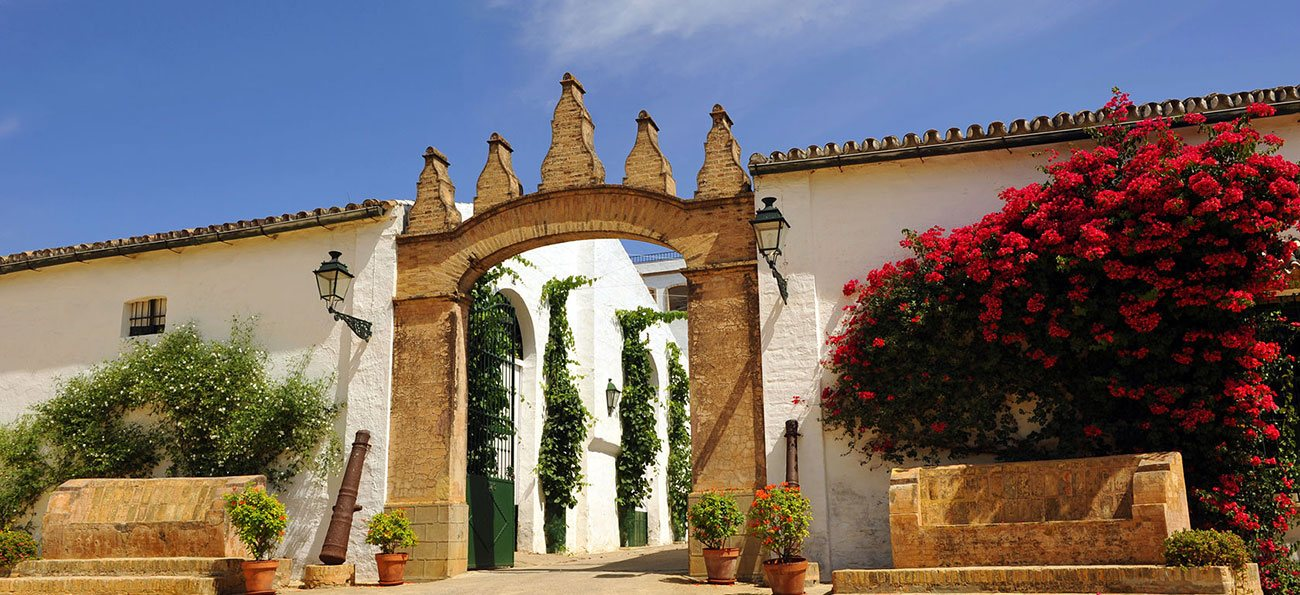 Equestrian and country properties in Spain