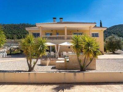 Property in Alicante